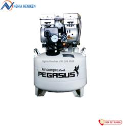 Máy nén khí không dầu Pegasus Tm Of750 40l