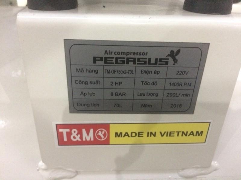 Thông số kĩ thuật máy nén khí Pegasus TM-OF 750*2-70l 2hp