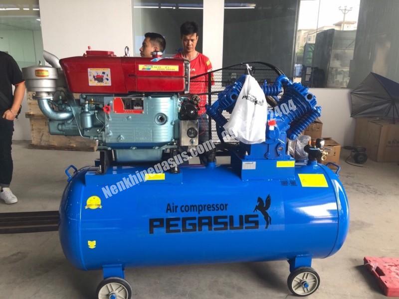Máy nén khí đầu nổ Pegasus 500L